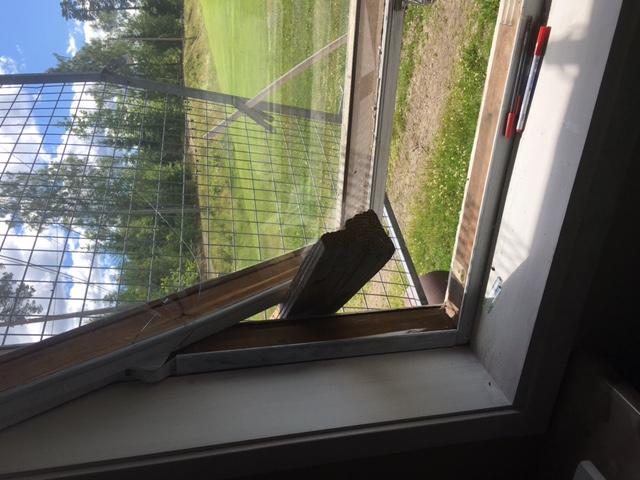 Med ett vedträ har det sönderbrutna fönsrte spärrats upp så att en smal tjuv tagit sig in
